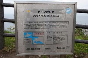 chikiu03 L-800x531