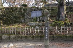 wakamatsuzyo05
